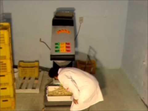 Invention machine frite wmv youtube - Appareil pour couper les pommes de terre en rondelles ...