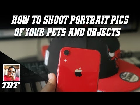 IPhone XR | Getting Portrait Photos Of Your Pet, Here's How #ITWORKS