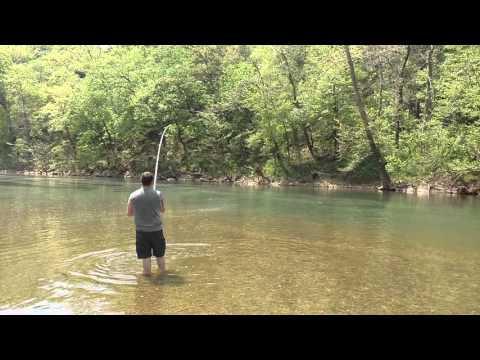 Paddlefish James River 2016
