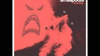 Smallpools - Dreaming (Magic Man Remix)