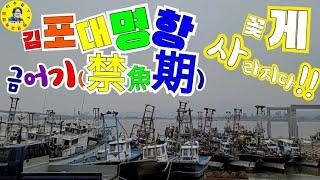 김포대명항 수산시장 2…