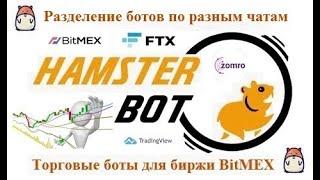 Hamster Bot - разделение ботов по разным чатам в телеграм
