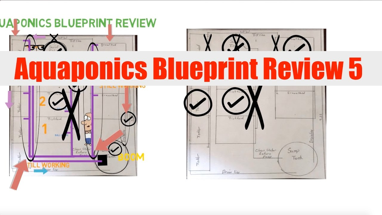 medium resolution of schematic diagram of aquaponic