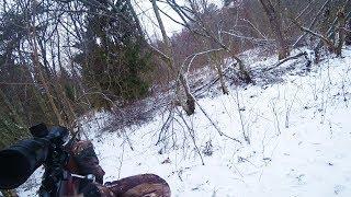 Охота #217 на волка, двухдневная облава, раненый