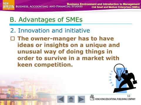 Small and medium enterprise