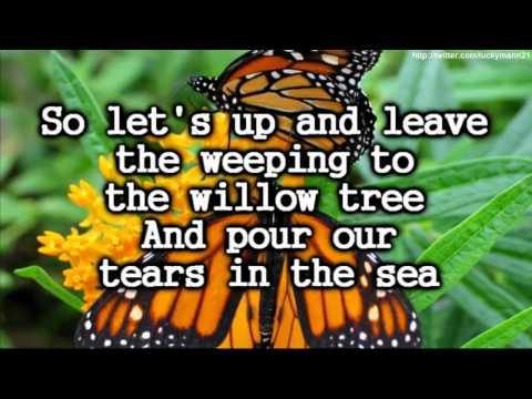 Owl City - Honey and Bee (Lyrics On Screen Video HD) New iTunes Full Song Pop 2011