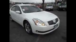 2005 Nissan Maxima SL 3.5 V6 Skyview Roof WHITE AND CLEAN!!!