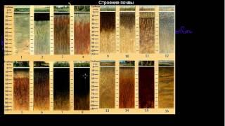 168  Строение почвы