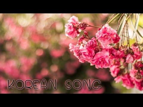 [K-SONG] รวมเพลงเกาหลีเพราะๆอีกแล้วจ้าาา #0006