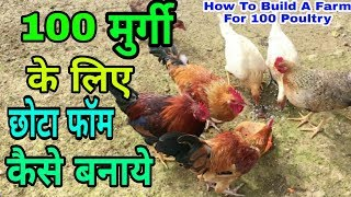 100 मुर्गी के लिए फार्म कैसा बनाये   How To Build A Farm For 100 Poultry