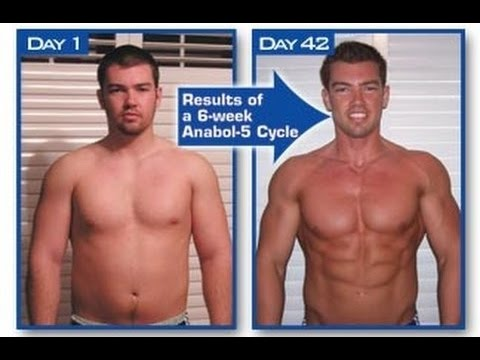 Muscle gaining secrets 2 0 Review Pdf Free Download