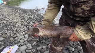 Рыбалка на речке Джарджан. #210 (26.01.2017)
