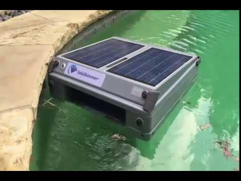 Skimmer Motion Automatic Pool Skimmer Review