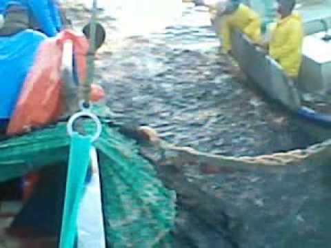 sardine fishing in Angola