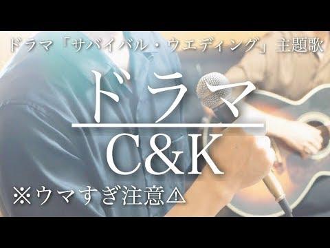【ウマすぎ注意⚠︎ 】ドラマ/C&K 波瑠主演ドラマ「サバイバル・ウェディング」主題歌 鳥と馬が歌うシリーズ
