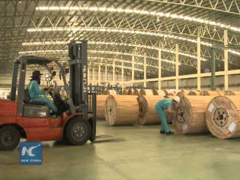 European expert: AIIB bridge between Western countries and emerging economies