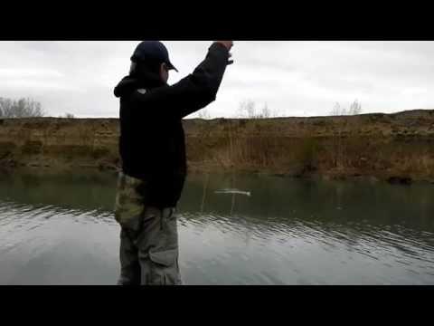 рыбалка в дагестане весной