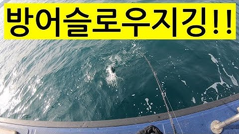 [바다낚시VLOG #22]포항 방어지깅낚시. Slow jigging for yellow tails on the boat in Pohang