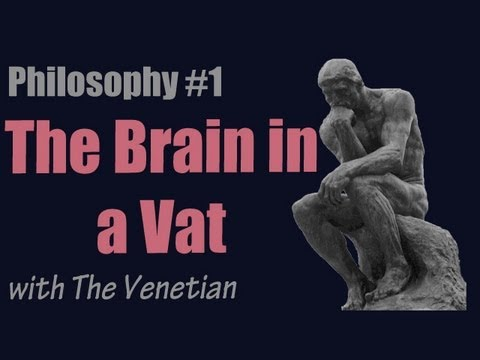 Hilary putnam brains in a vat essay