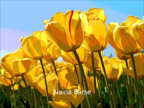 Naina Barse