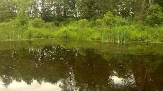 видео Отдых с рыбалкой в тверской области на выходные (турбазы и базы отдыха тверской области)