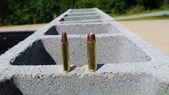 350 Legend vs 450 Bushmaster - Cinder Block Test