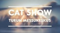 Cat Show, Turun Messukeskus, Part 2