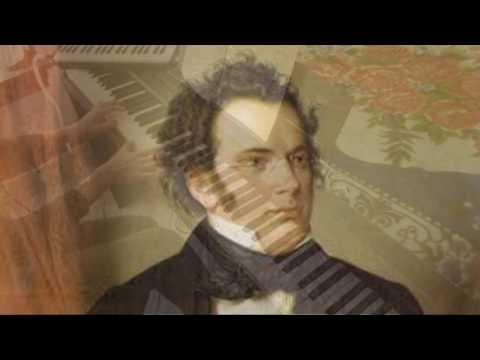 Franz Schubert: An die Musik (To music) C Major Piano Accompaniment Only