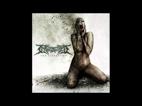 Ingested - Castigation and Rebirth (NEW SONG 2011) With Lyrics