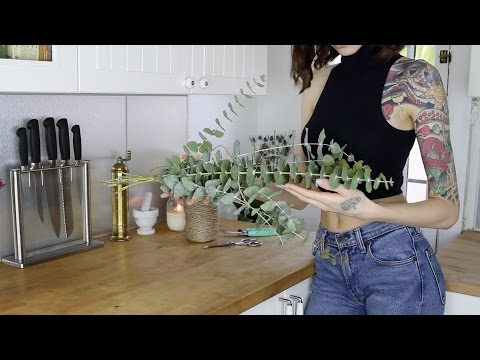 Eucalyptus Shower Hanger DIY | Bathroom Hack