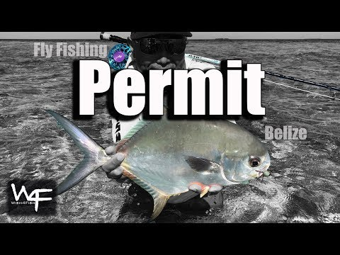W4F - Fly Fishing Permit In Belize