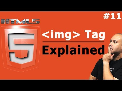 How To Embed Images In HTML - IMG Tag Explained - Tutorial For Beginners