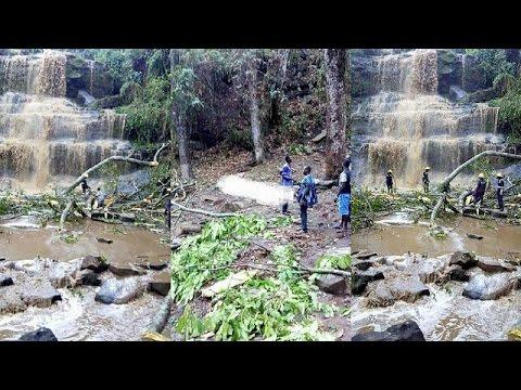 Storm in Ghana: Fallen trees kill 20 high school students