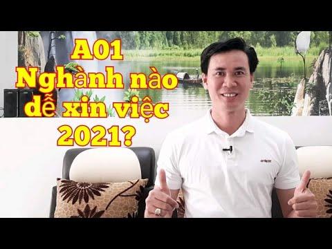 Tổ Hợp A01 - Những Nghành Xét Tuyển A01 - Tuyển Sinh ĐH 2021, Lương Cao, Dễ Xin Việc/ Bảo Trang TV