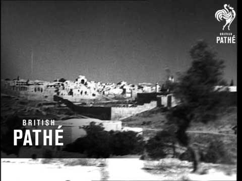 War In Palestine With The Arabs (1948)