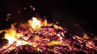 1 Hour Roaring Fire with Relaxing Sounds