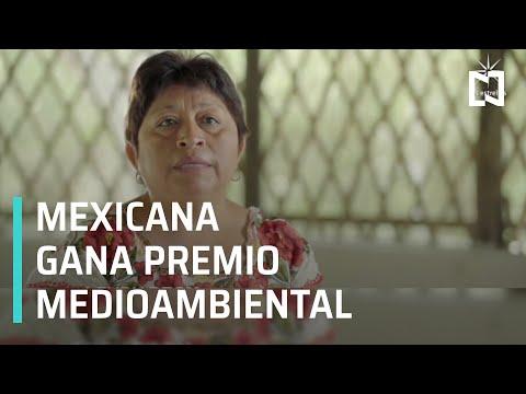Mexicana recibe el premio Goldman, apodado el 'Nobel del medio ambiente' - En Punto