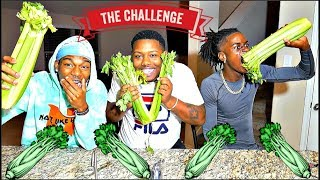 Stalk Of Celery Challenge🌿🌿