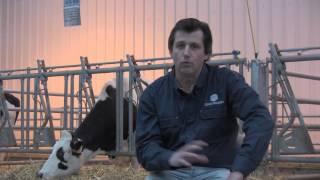 Variations Index Taureaux Holstein Février 2013
