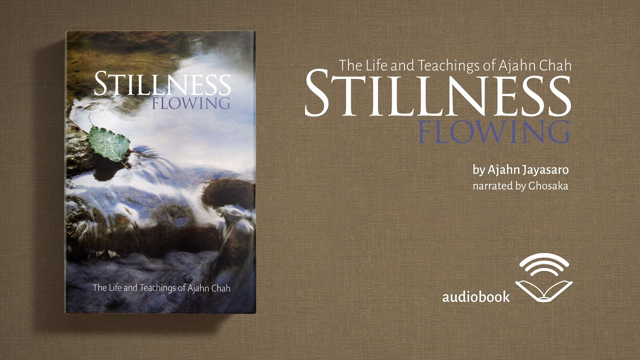 Stillness Flowing | Chapter VI: The Heart of the Matter - Calm and Insight