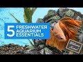 5 Freshwater Aquarium Essentials