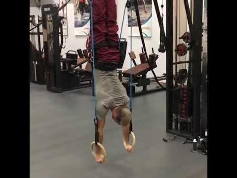Gymnastics forza bodyweight training