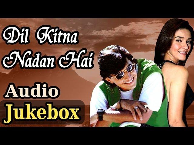 Dil Kitna Nadan Hai (HD)- All Song - Raja Bherwani -Raageshwari -Kumar Sanu - Alka Yagnik -Anu Malik
