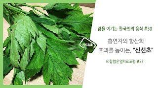 암을 이기는 한국인의 음식#30 신선초 by항암온열치료…