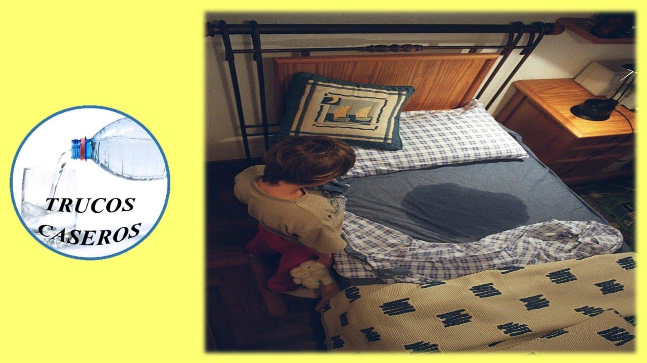 Como evitar que los ni os se orinen en la cama remedios for Como se llaman las camas que se doblan