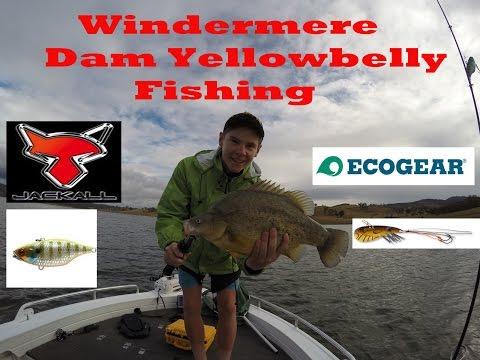 Big Yellowbelly Fishing! (Windermere)