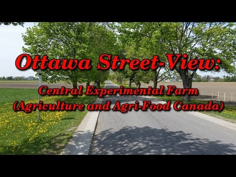 Ottawa Street-View: Central Experimental Farm (Agriculture and Agri-Food Canada)
