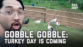 Gobble Gobble: Turkey Day is Coming