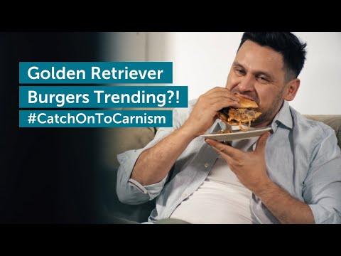 Golden Retriever Burgers Trending?! #CatchOnToCarnism