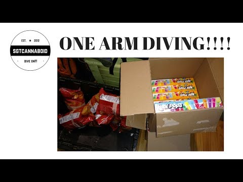 1 ARM DIVING/POST SURGERY DIVE REVEAL